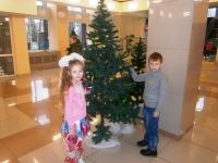 «Новогодняя елка главы района»